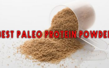Best Paleo Protein Powder List of 2019